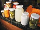 Top 10 ProbioticFoods