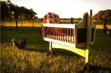 Country Baby Cradle