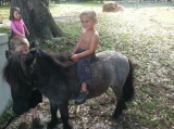 Grant's First Pony Ride