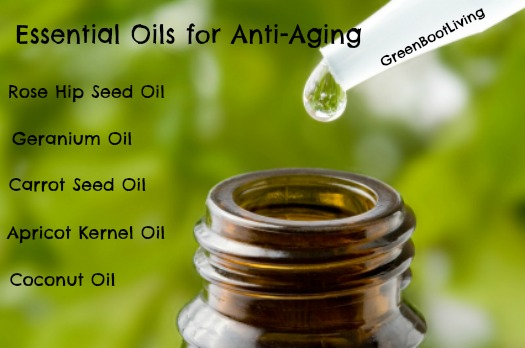 7 Natural Home Facial Recipes for Fighting Wrinkles - A number of essential oils do have anti-aging properties. The oils of fennel, frankincense, myrrh, rose, rosemary, and sandalwood have proven abilities to fight aging. Here are 7 natural home facial recipes which use them to get rid of wrinkles.